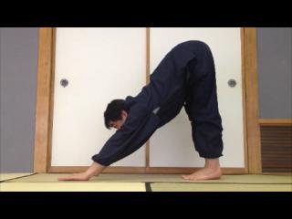 上体の前後両面と膝裏を伸ばす体位